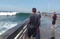 San Diego Big Wave Wets Tourist Funny