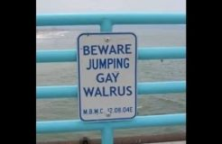 75 World's Funniest Signs of All-Time