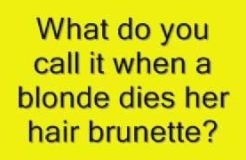 Mommy, Is It Because I'm Blonde?